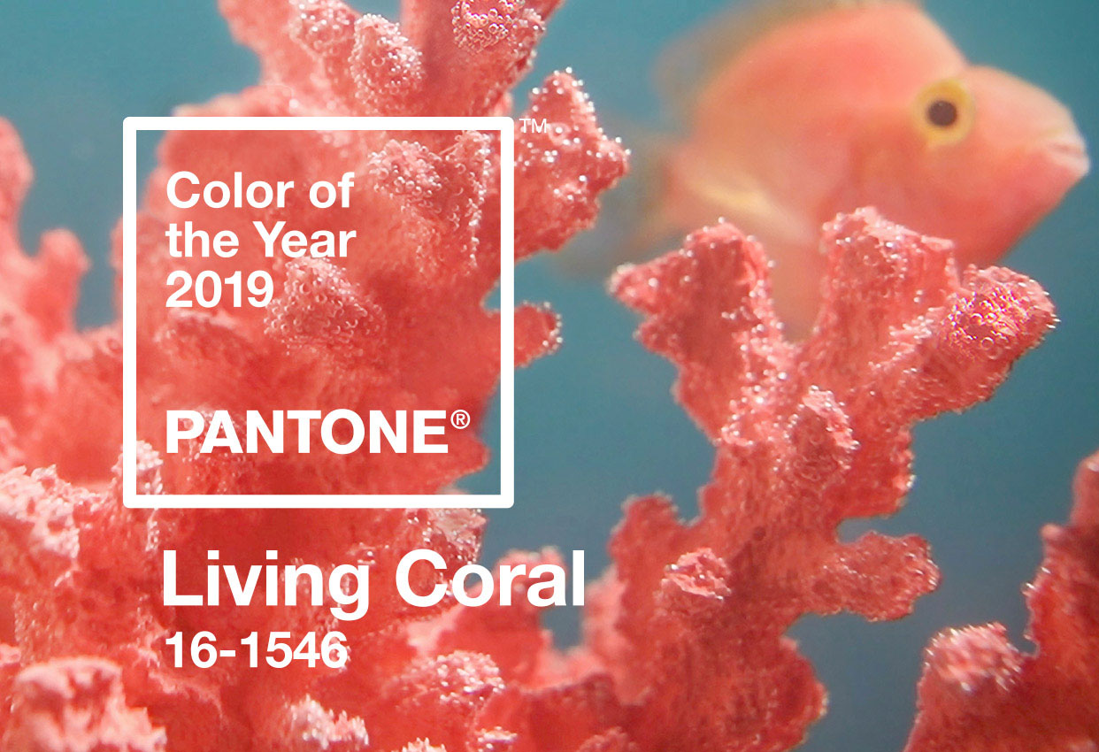Wearing The Pantone Color of the Year 2019, Living Coral