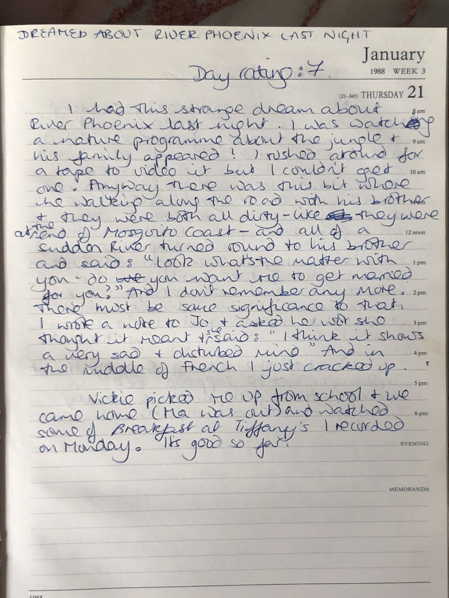 Not Dressed As Lamb's Teenage diaries 1988